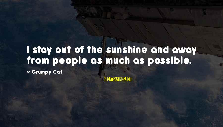 Grumpy People Sayings By Grumpy Cat: I stay out of the sunshine and away from people as much as possible.