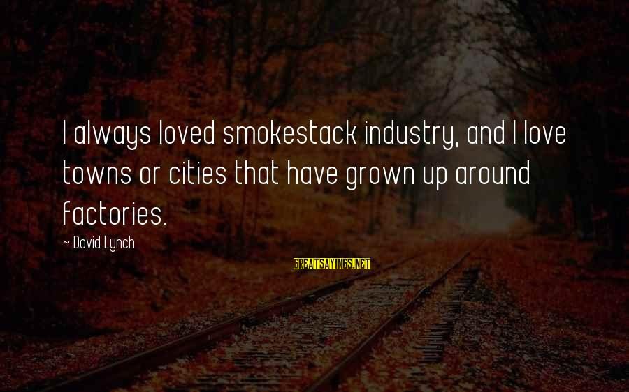 Gsa Advantage Sayings By David Lynch: I always loved smokestack industry, and I love towns or cities that have grown up