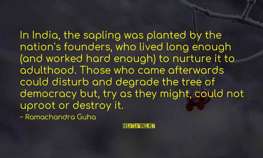 Guha Sayings By Ramachandra Guha: In India, the sapling was planted by the nation's founders, who lived long enough (and
