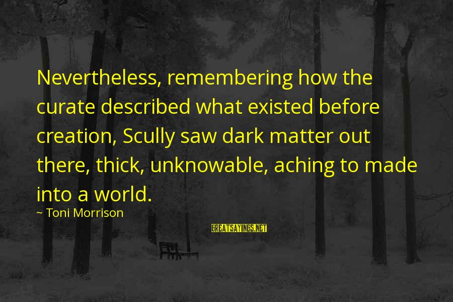 Gwen Demarco Sayings By Toni Morrison: Nevertheless, remembering how the curate described what existed before creation, Scully saw dark matter out