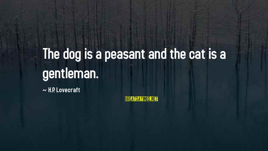 H.p. Lovecraft Cat Sayings By H.P. Lovecraft: The dog is a peasant and the cat is a gentleman.