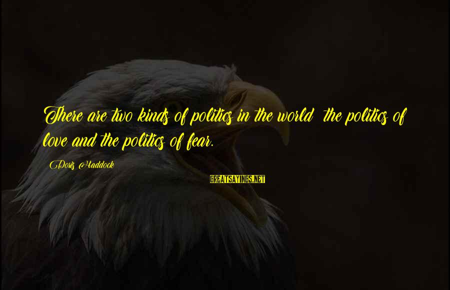 Haddock Sayings By Doris Haddock: There are two kinds of politics in the world: the politics of love and the