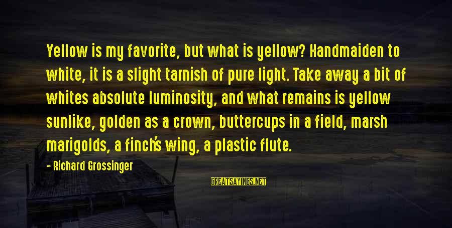 Handmaiden Sayings By Richard Grossinger: Yellow is my favorite, but what is yellow? Handmaiden to white, it is a slight