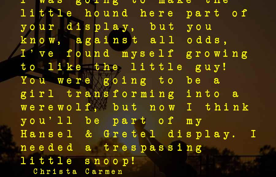 Hansel Sayings By Christa Carmen: I was going to make the little hound here part of your display, but you
