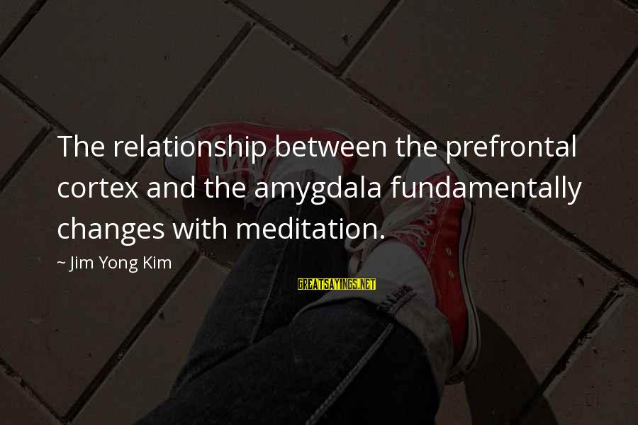 Happy 5 Year Work Anniversary Sayings By Jim Yong Kim: The relationship between the prefrontal cortex and the amygdala fundamentally changes with meditation.