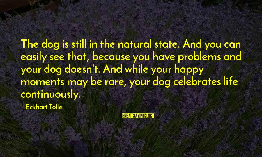 Happy Moments In Life Sayings By Eckhart Tolle: The dog is still in the natural state. And you can easily see that, because