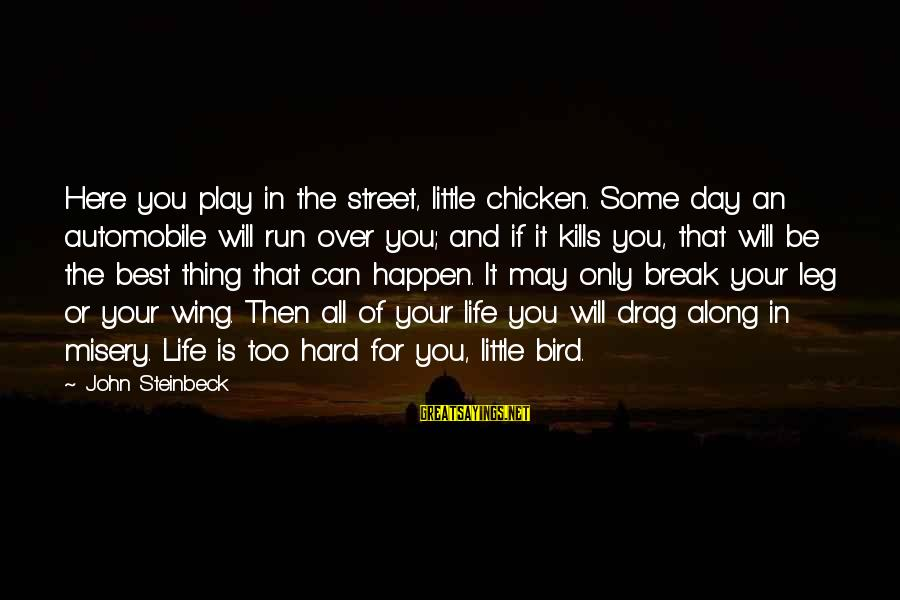 Hard Day Inspirational Sayings By John Steinbeck: Here you play in the street, little chicken. Some day an automobile will run over