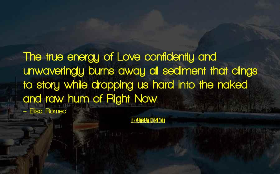 Hard Soul Sayings By Elisa Romeo: The true energy of Love confidently and unwaveringly burns away all sediment that clings to