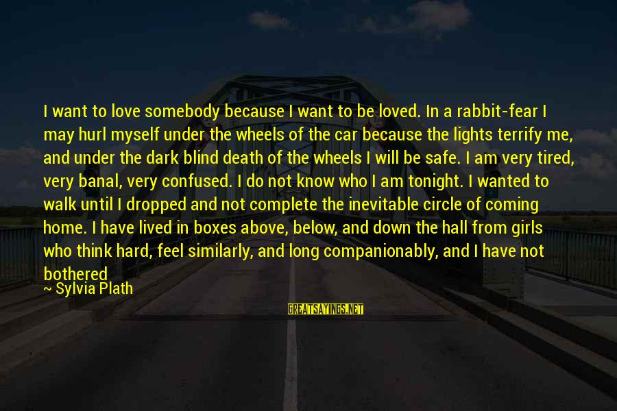 Hard Work And Sacrifice Sayings By Sylvia Plath: I want to love somebody because I want to be loved. In a rabbit-fear I