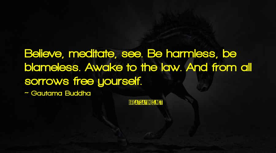 Harmless Sayings By Gautama Buddha: Believe, meditate, see. Be harmless, be blameless. Awake to the law. And from all sorrows
