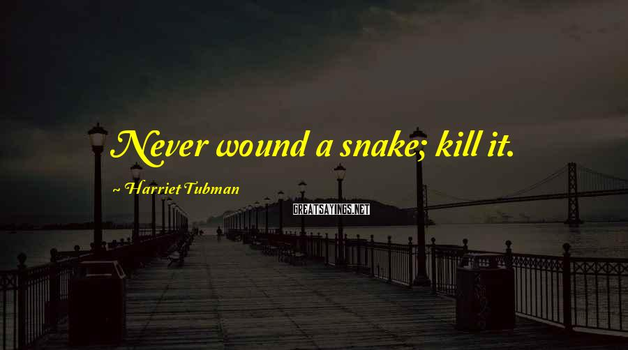Harriet Tubman Sayings: Never wound a snake; kill it.