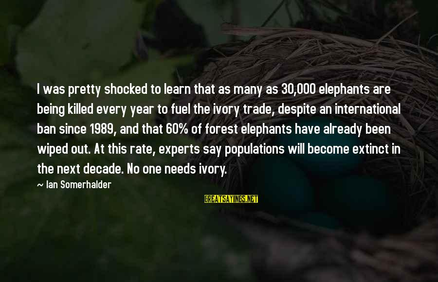 Have No One Sayings By Ian Somerhalder: I was pretty shocked to learn that as many as 30,000 elephants are being killed