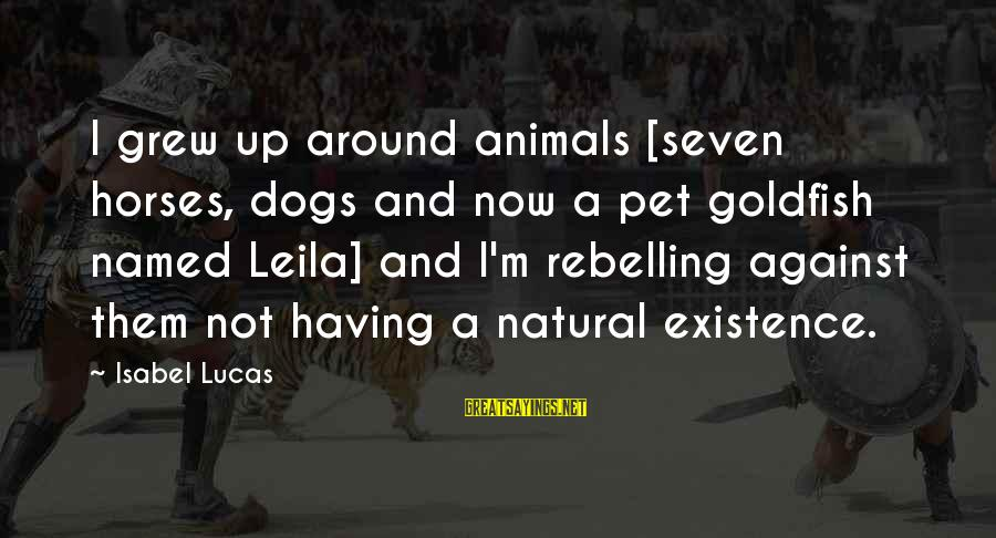 Having A Dog Sayings By Isabel Lucas: I grew up around animals [seven horses, dogs and now a pet goldfish named Leila]