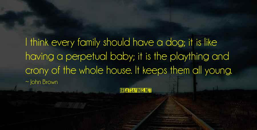 Having A Dog Sayings By John Brown: I think every family should have a dog; it is like having a perpetual baby;