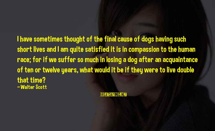Having A Dog Sayings By Walter Scott: I have sometimes thought of the final cause of dogs having such short lives and