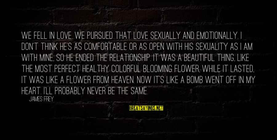 Heart Healthy Sayings By James Frey: We fell in love. We pursued that love sexually and emotionally. I don't think he's