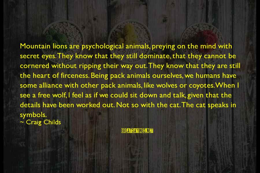 Heart Ripping Sayings By Craig Childs: Mountain lions are psychological animals, preying on the mind with secret eyes. They know that