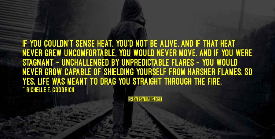 Heat Sayings By Richelle E. Goodrich: If you couldn't sense heat, you'd not be alive. And if that heat never grew