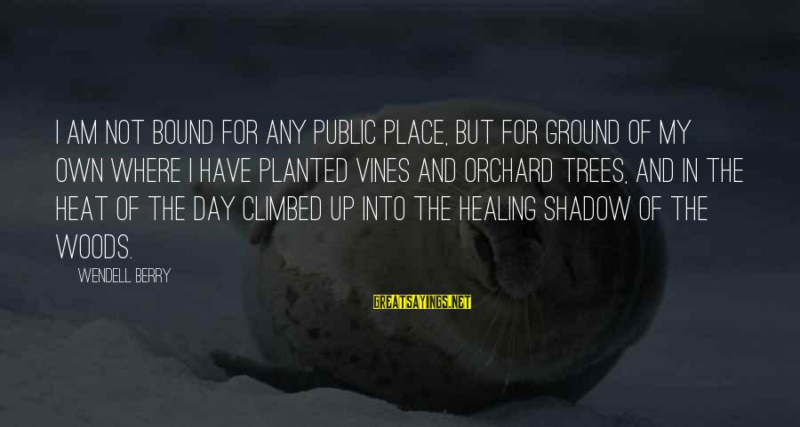 Heat Sayings By Wendell Berry: I am not bound for any public place, but for ground of my own where