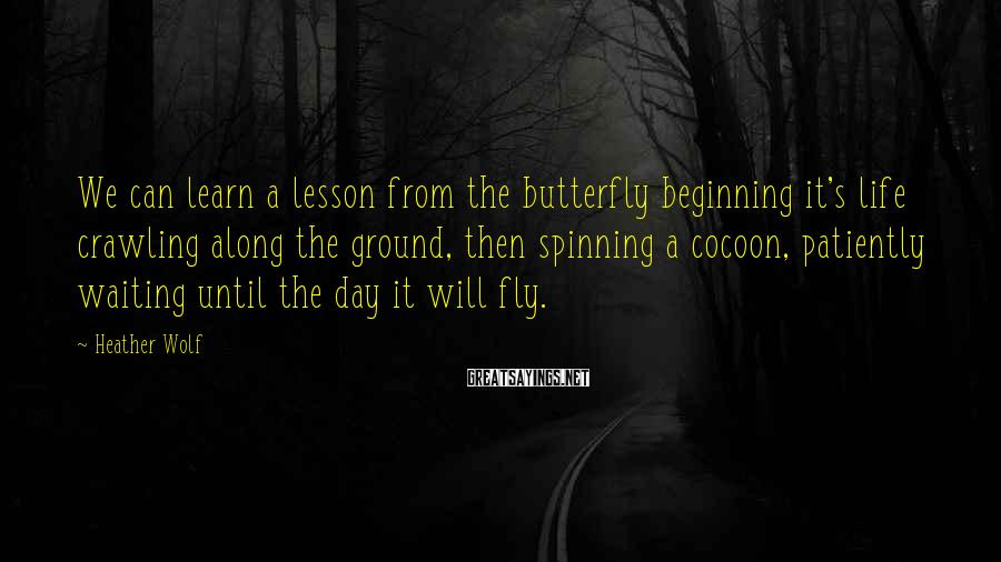 Heather Wolf Sayings: We can learn a lesson from the butterfly beginning it's life crawling along the ground,