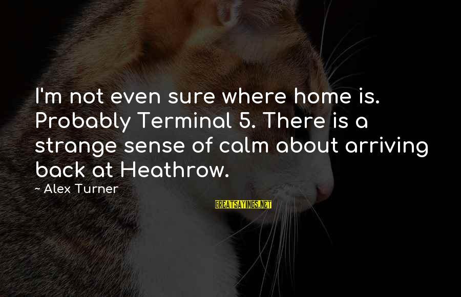 Heathrow's Sayings By Alex Turner: I'm not even sure where home is. Probably Terminal 5. There is a strange sense