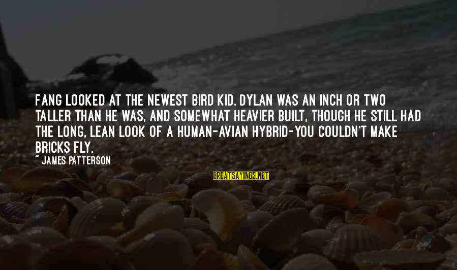 Heavier Than Sayings By James Patterson: Fang looked at the newest bird kid. Dylan was an inch or two taller than