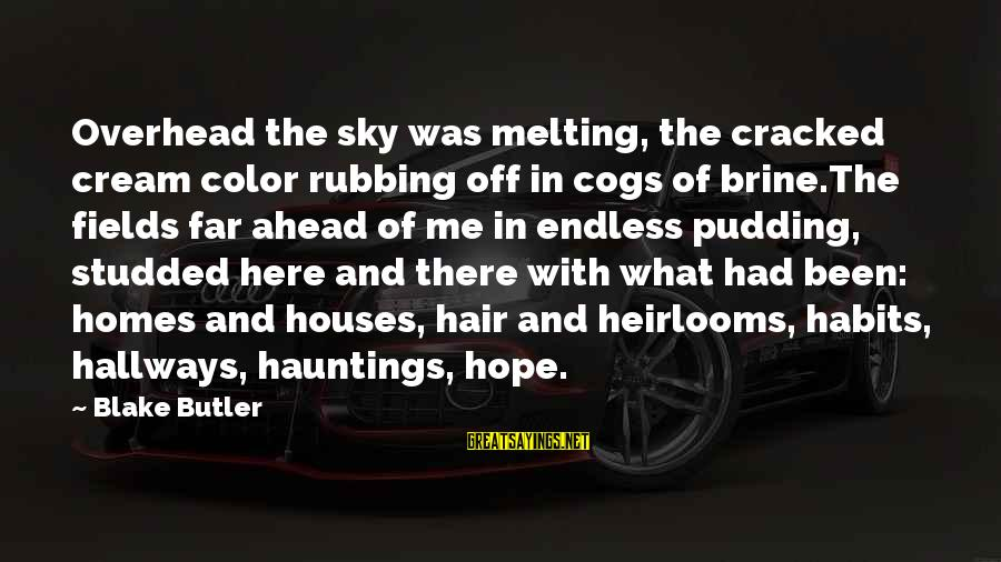 Heirlooms Sayings By Blake Butler: Overhead the sky was melting, the cracked cream color rubbing off in cogs of brine.The