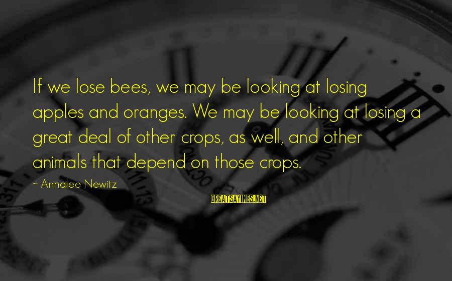 Hektor Sayings By Annalee Newitz: If we lose bees, we may be looking at losing apples and oranges. We may
