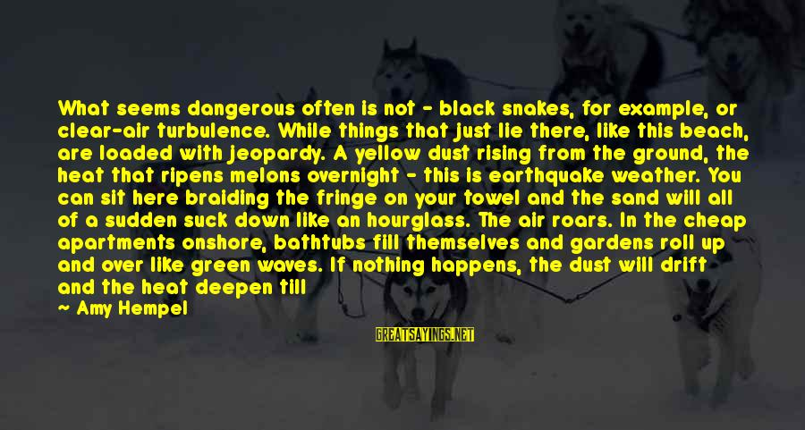 Hempel Sayings By Amy Hempel: What seems dangerous often is not - black snakes, for example, or clear-air turbulence. While