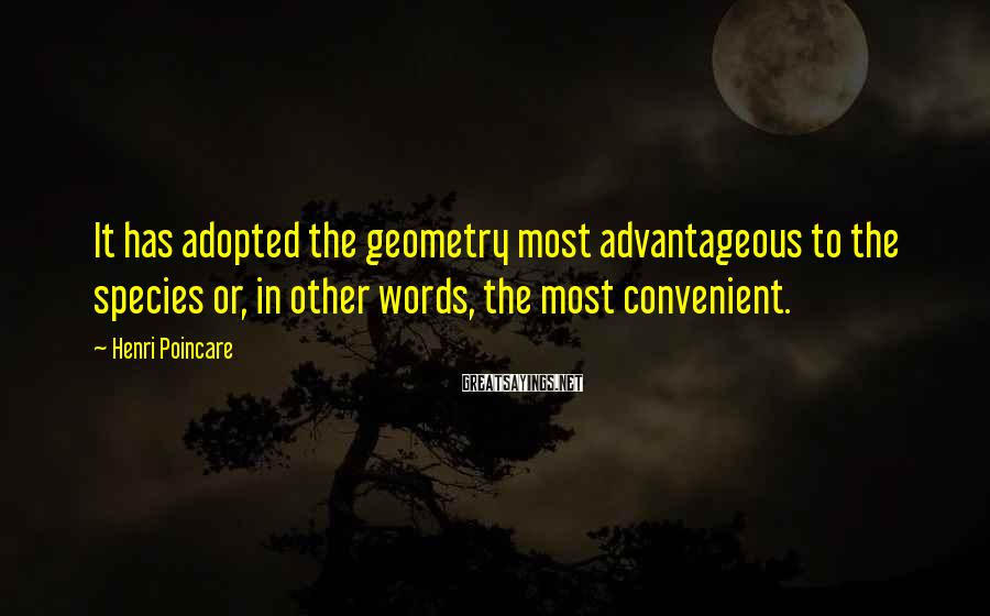 Henri Poincare Sayings: It has adopted the geometry most advantageous to the species or, in other words, the