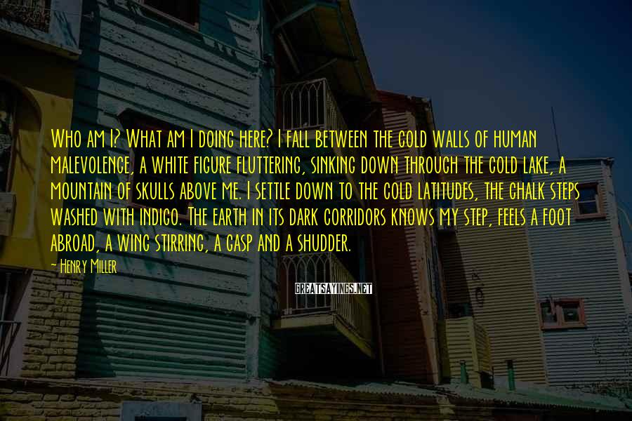 Henry Miller Sayings: Who am I? What am I doing here? I fall between the cold walls of