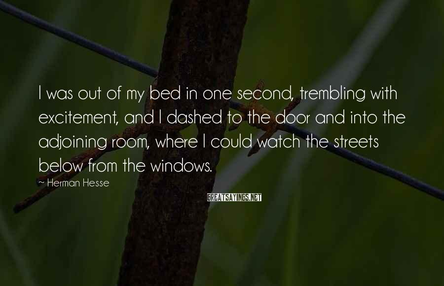 Herman Hesse Sayings: I was out of my bed in one second, trembling with excitement, and I dashed