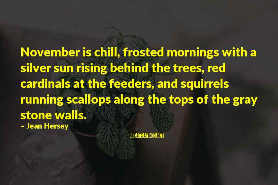 Hersey's Sayings By Jean Hersey: November is chill, frosted mornings with a silver sun rising behind the trees, red cardinals