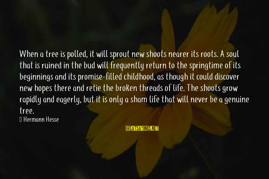 Hesse Sayings By Hermann Hesse: When a tree is polled, it will sprout new shoots nearer its roots. A soul