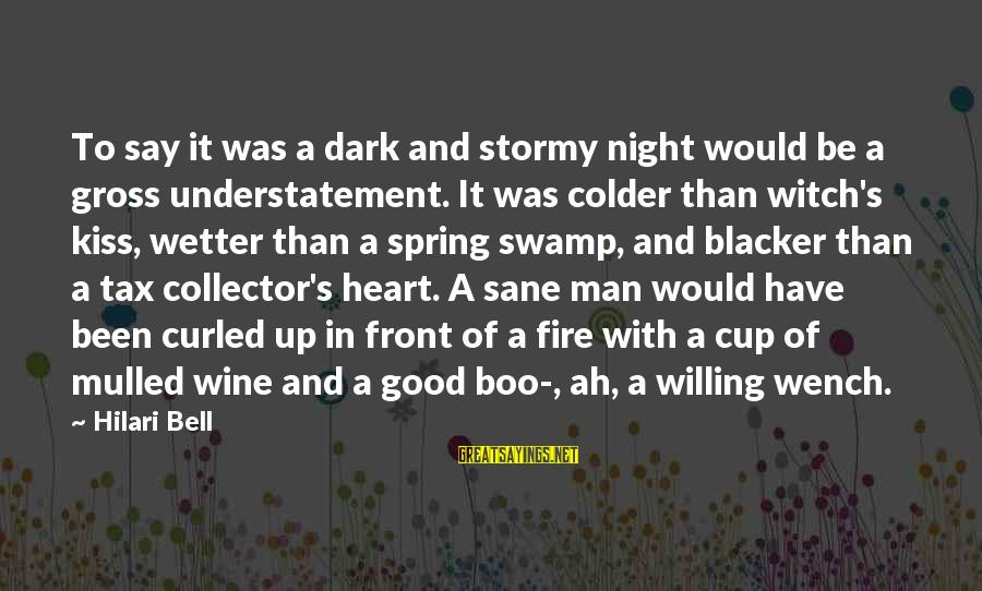 Hilari Sayings By Hilari Bell: To say it was a dark and stormy night would be a gross understatement. It