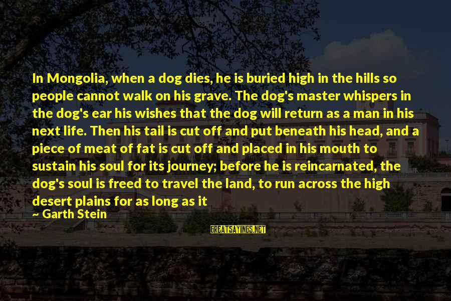 Hills In Life Sayings By Garth Stein: In Mongolia, when a dog dies, he is buried high in the hills so people