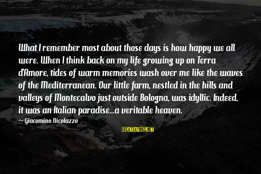 Hills In Life Sayings By Giacomino Nicolazzo: What I remember most about those days is how happy we all were. When I