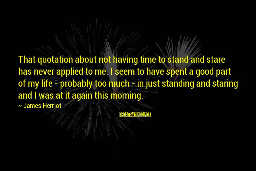 Hills In Life Sayings By James Herriot: That quotation about not having time to stand and stare has never applied to me.
