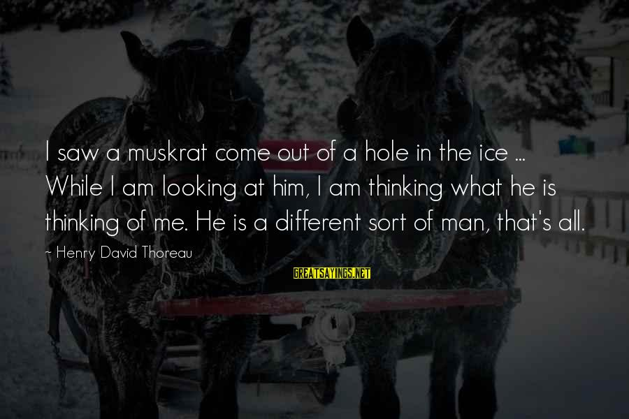 Him Looking At Me Sayings By Henry David Thoreau: I saw a muskrat come out of a hole in the ice ... While I