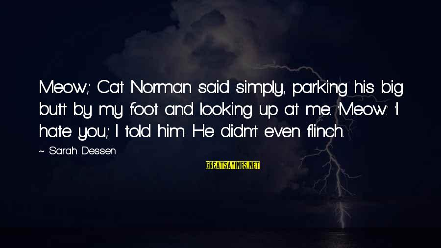 Him Looking At Me Sayings By Sarah Dessen: Meow,' Cat Norman said simply, parking his big butt by my foot and looking up