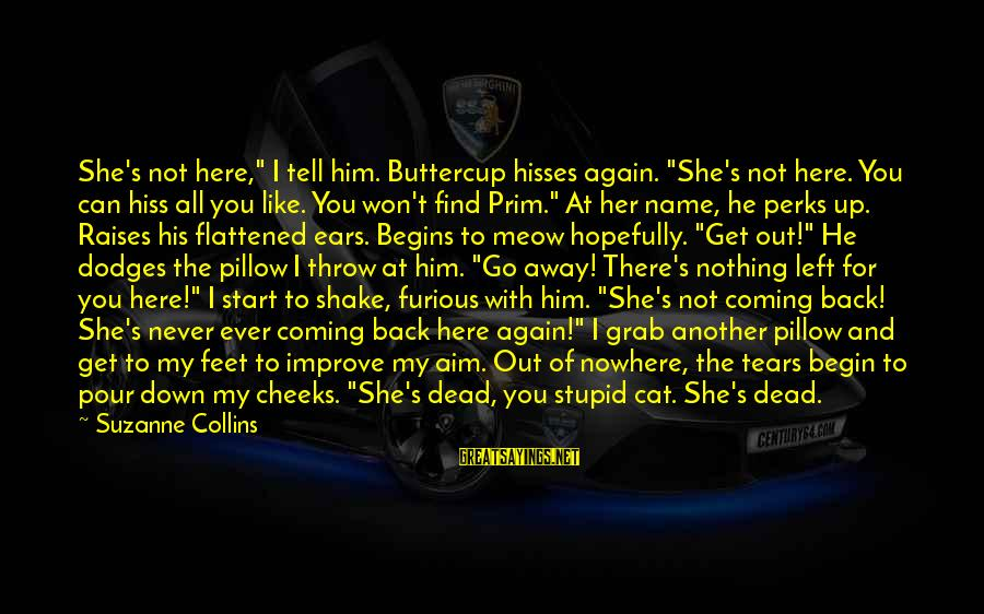"""Hisses Sayings By Suzanne Collins: She's not here,"""" I tell him. Buttercup hisses again. """"She's not here. You can hiss"""