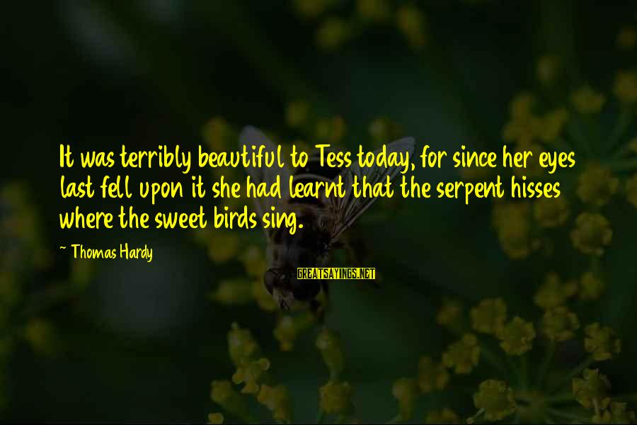 Hisses Sayings By Thomas Hardy: It was terribly beautiful to Tess today, for since her eyes last fell upon it