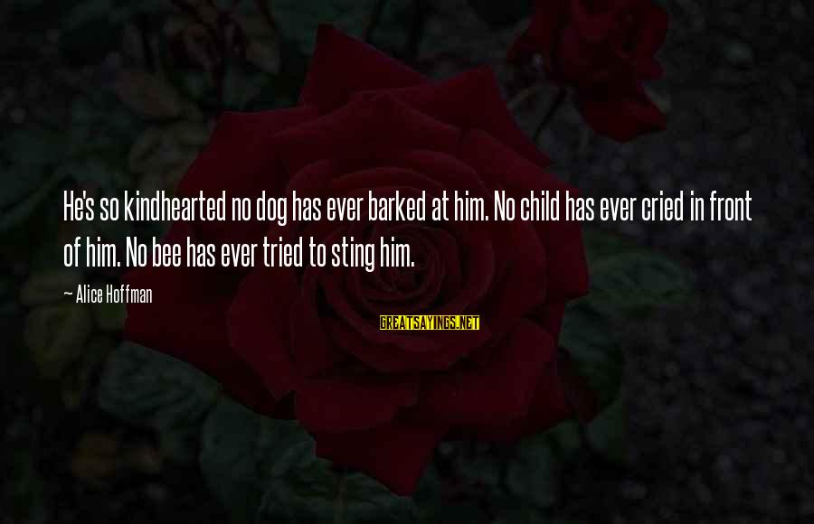 Hoffman's Sayings By Alice Hoffman: He's so kindhearted no dog has ever barked at him. No child has ever cried