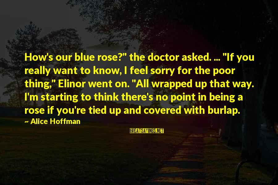 """Hoffman's Sayings By Alice Hoffman: How's our blue rose?"""" the doctor asked. ... """"If you really want to know, I"""