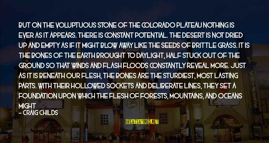 Hollowed Sayings By Craig Childs: But on the voluptuous stone of the Colorado Plateau nothing is ever as it appears.
