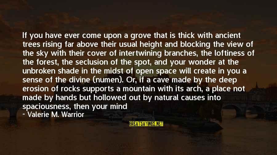 Hollowed Sayings By Valerie M. Warrior: If you have ever come upon a grove that is thick with ancient trees rising