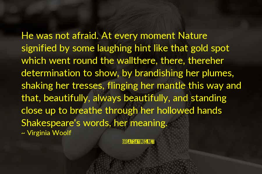 Hollowed Sayings By Virginia Woolf: He was not afraid. At every moment Nature signified by some laughing hint like that