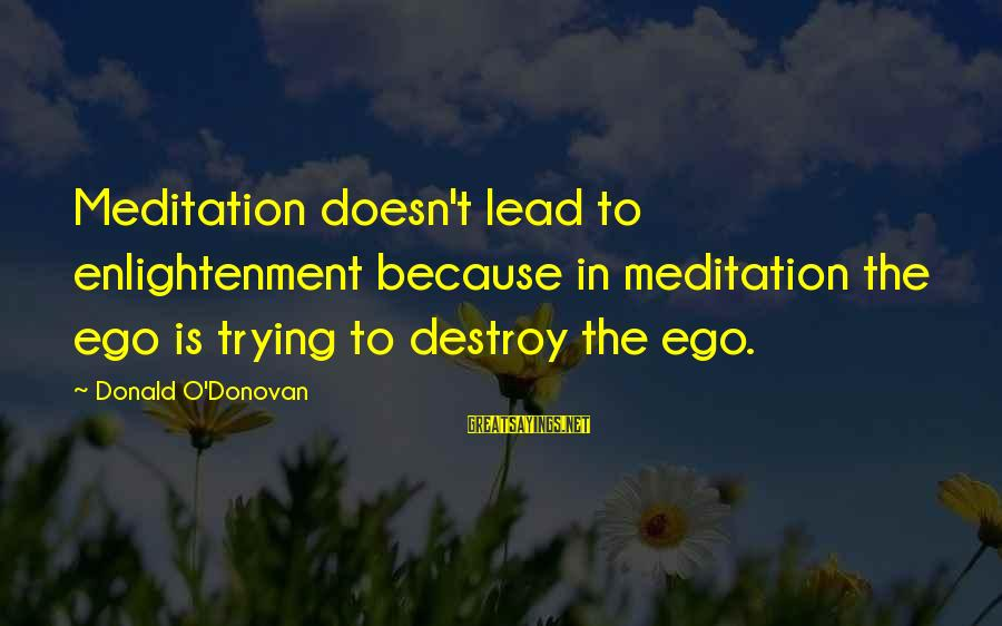 Homelessness Sayings By Donald O'Donovan: Meditation doesn't lead to enlightenment because in meditation the ego is trying to destroy the