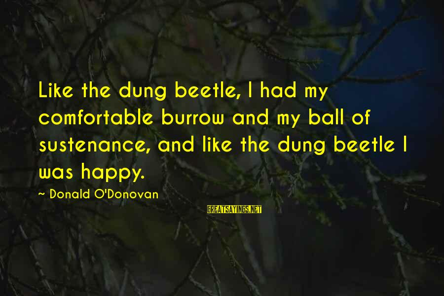 Homelessness Sayings By Donald O'Donovan: Like the dung beetle, I had my comfortable burrow and my ball of sustenance, and