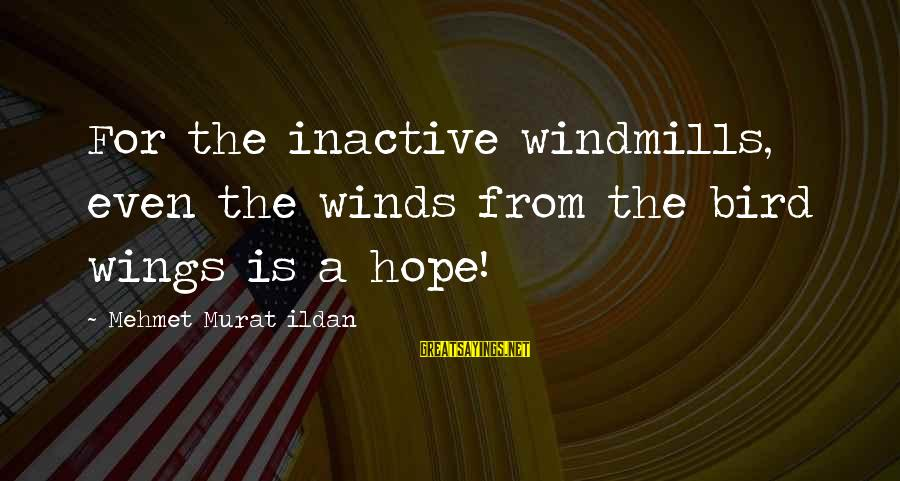 Hope Is The Sayings By Mehmet Murat Ildan: For the inactive windmills, even the winds from the bird wings is a hope!
